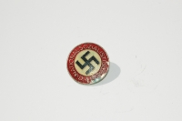 NSDAP Party Pin Painted Example